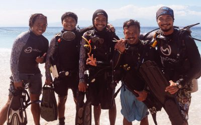 Help us plant corals this holiday season!